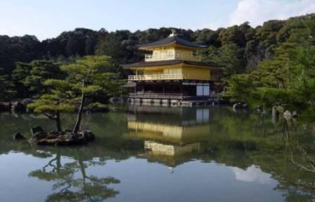 Япония: выставка современного искусства в Киото